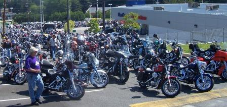 Hundreds of bikes
