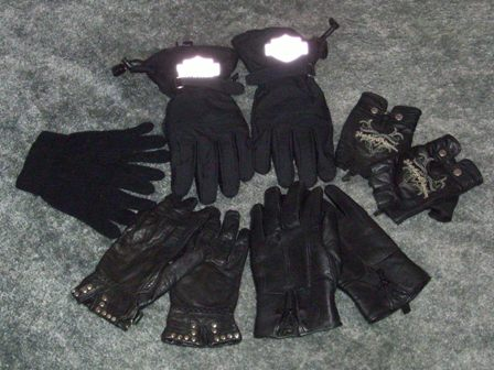 Diana's riding gloves