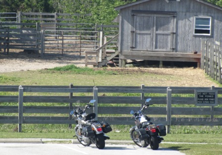 Our motorcycles at the Ocracoke Pony Pen