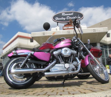 Pink Sportster